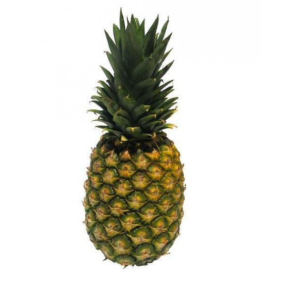 Ananas 1 stk. - Økologisk