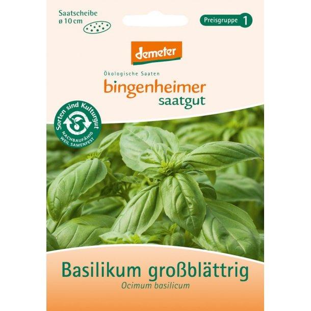 Basilikum frø 1 brev - Biodynamisk