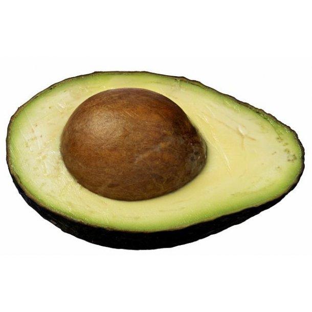 Avocado 1 stk - Økologisk