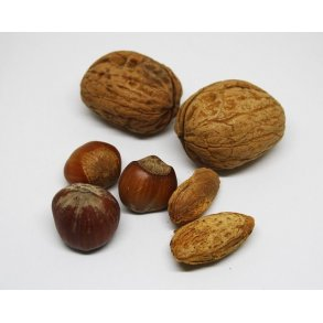 Tørrede frugter og nødder