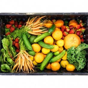 Grøntsags- og frugtkasser